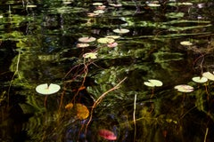Abstract Reflections on New Hampshire Pond Landscape