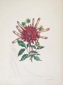 Dahlia Rapax - Surrealistic Florals - Original Etching Handsigned N°
