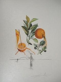 Flordali : Erotic Grapefruit - Original Handsigned Etching (Field #69-11I)