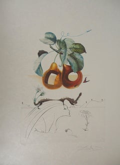 Flordali : Fruit with Holes - Original Handsigned Etching (Field 69-11F)