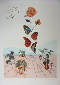 Flordali II : Butterfly Rose - Original lithograph (Field p. 233)