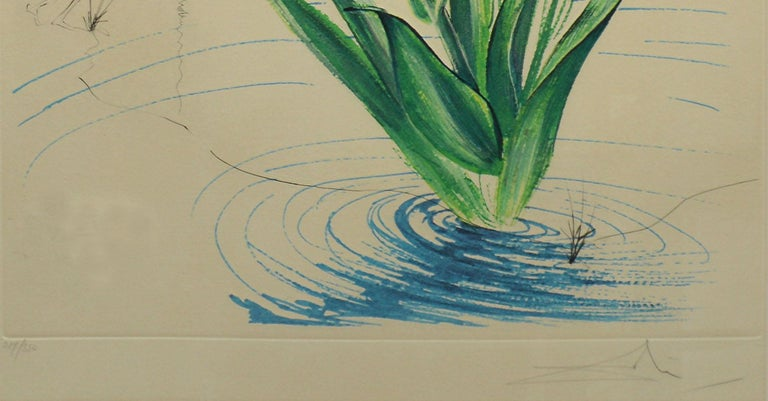 Original lithograph and engraving by Salvador Dali from the series