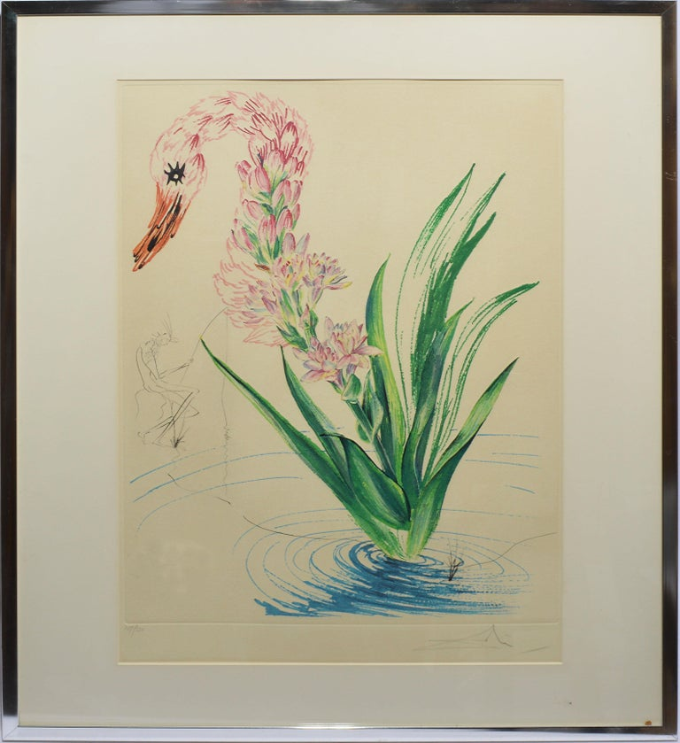 """Salvador Dalí Animal Print - Original etching and lithograph, """"Water Hibiscus Swan,"""" hand signed and numbered"""