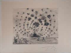 Mythology : Argus (the Peacock) - Original etching, Handsigned (Field #63-3A)