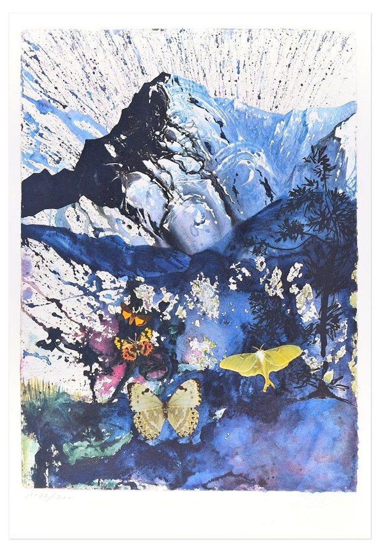 """Salvador Dalí Print - Plate IV - From """"Suite Papillon"""" - Original Lithograph and Heliogravure - 1969"""