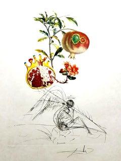 Salvador Dali - Angel and Pomegranate - Original Hand-Signed Lithograph