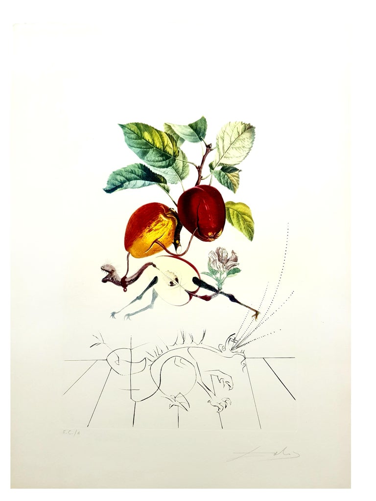Salvador Dali - Apple Dragon - Original Hand-Signed Lithograph - Print by Salvador Dalí