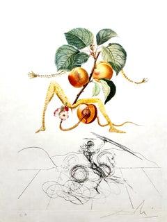 Salvador Dali - Apricot - Original Hand-Signed Lithograph
