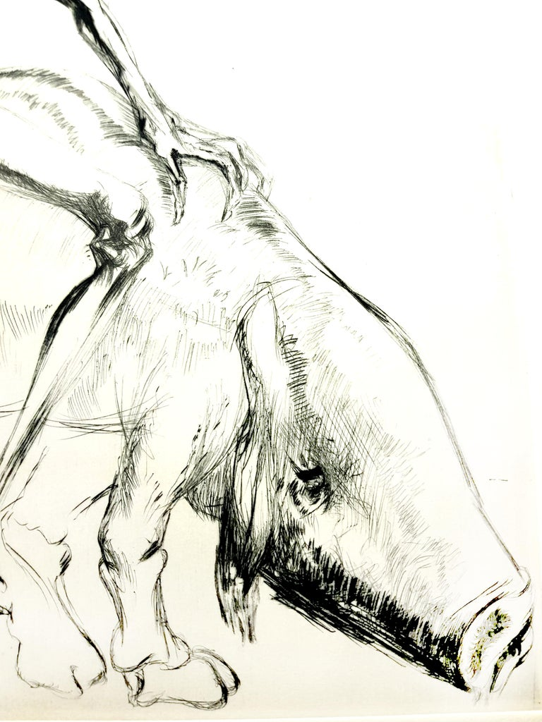 Salvador Dali - Baubo (Woman Riding a Sow), from Faust - Original Etching - Beige Figurative Print by Salvador Dalí
