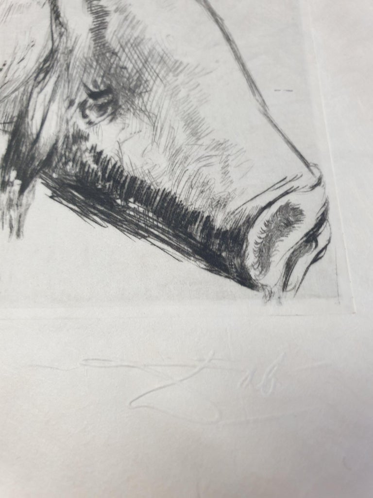 Salvador Dali - Baubo (Woman Riding a Sow), from Faust - Original Etching For Sale 4