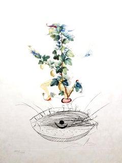 Salvador Dali - Currant's Reverence - Original Hand-Signed Lithograph