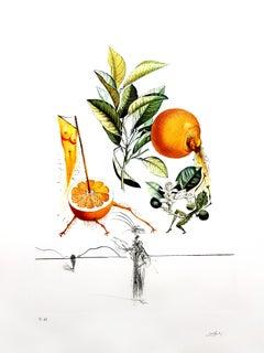Salvador Dali - Erotic Grapefruit - Original Hand-Signed Lithograph
