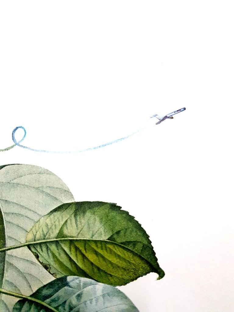 Salvador Dali - Fruits With Holes - Original Hand-Signed Lithograph For Sale 6