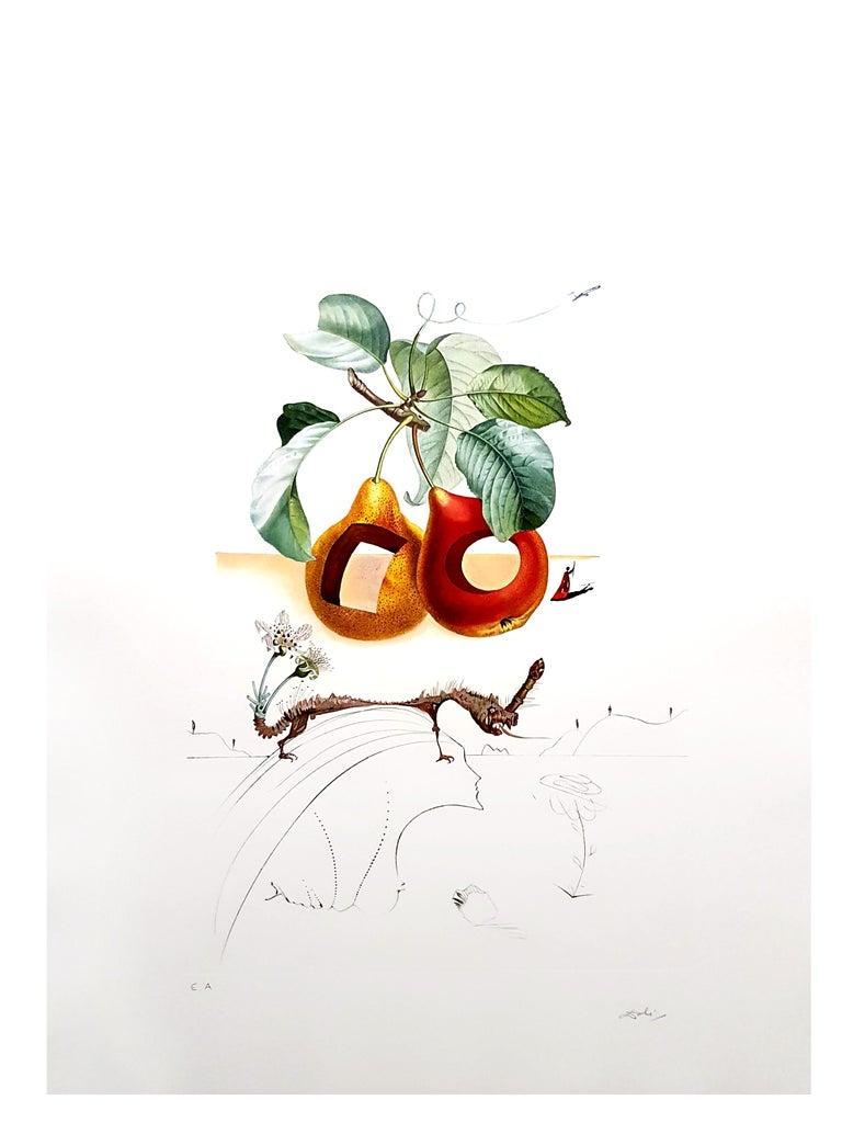 Salvador Dali - Fruits With Holes - Original Hand-Signed Lithograph For Sale 8