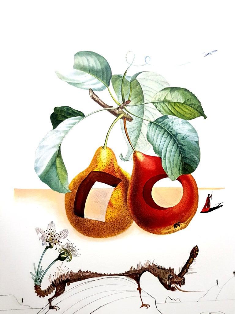Salvador Dali - Fruits With Holes - Original Hand-Signed Lithograph - Orange Still-Life Print by Salvador Dalí