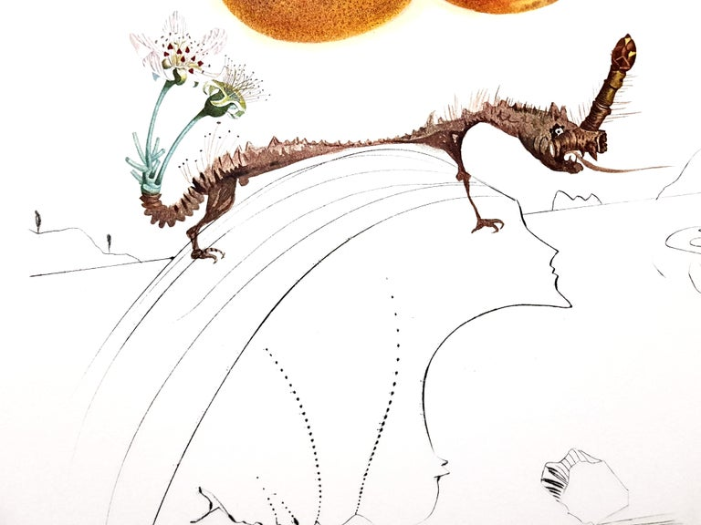 Salvador Dali - Fruits With Holes - Original Hand-Signed Lithograph For Sale 1