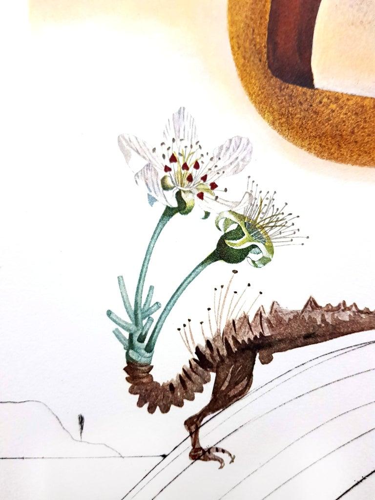 Salvador Dali - Fruits With Holes - Original Hand-Signed Lithograph For Sale 3