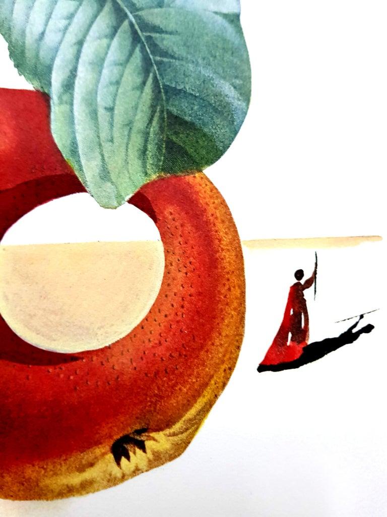 Salvador Dali - Fruits With Holes - Original Hand-Signed Lithograph For Sale 4