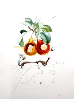 Salvador Dali - Fruits With Holes - Original Hand-Signed Lithograph