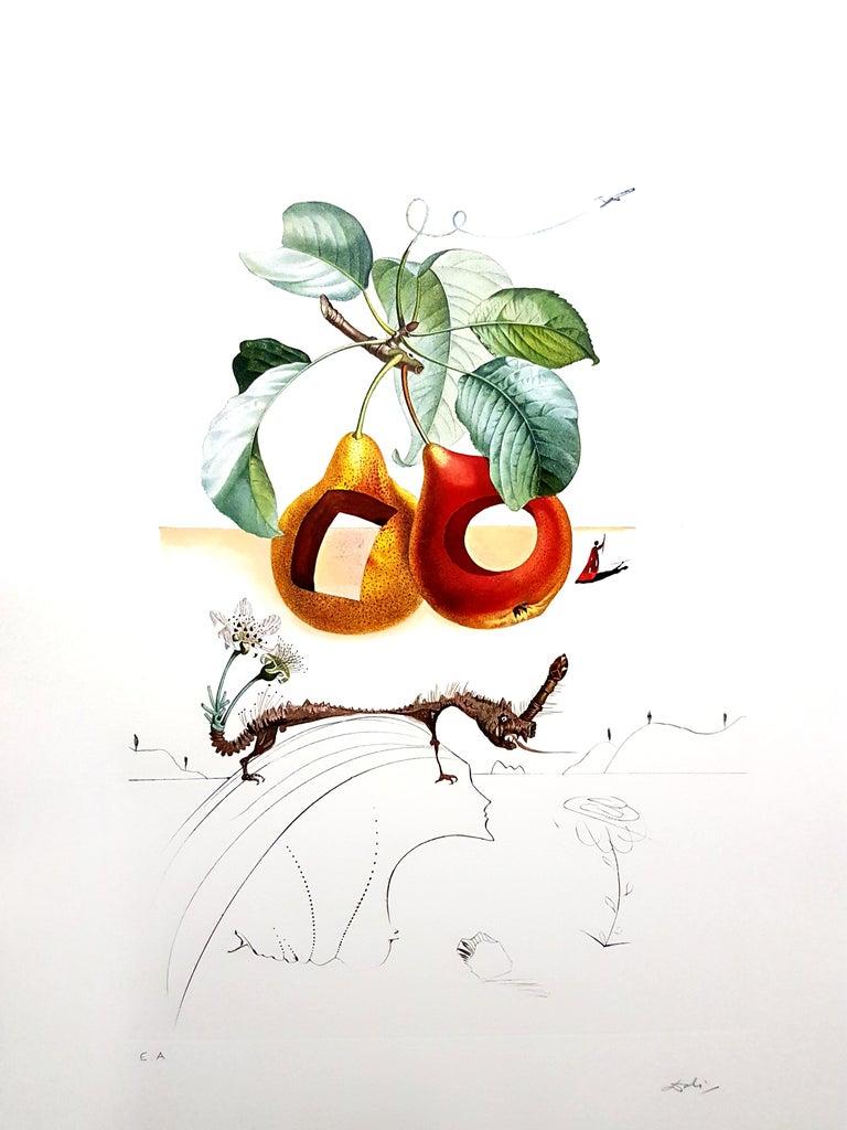 Salvador Dalí Still-Life Print - Salvador Dali - Fruits With Holes - Original Hand-Signed Lithograph