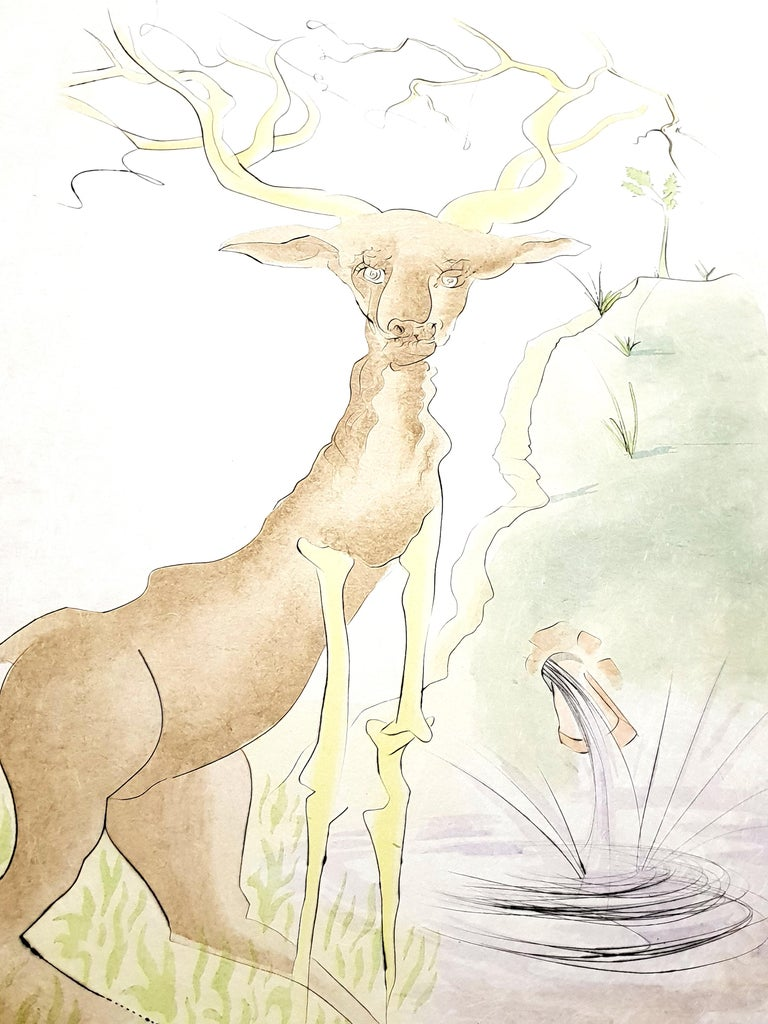 Salvador Dali - Le Cerf from Le Bestiaire de la Fontaine - Signed Engraving For Sale 2