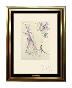 Salvador Dali Original Faust Etching Rare HAND SIGNED Color Art Wizard print