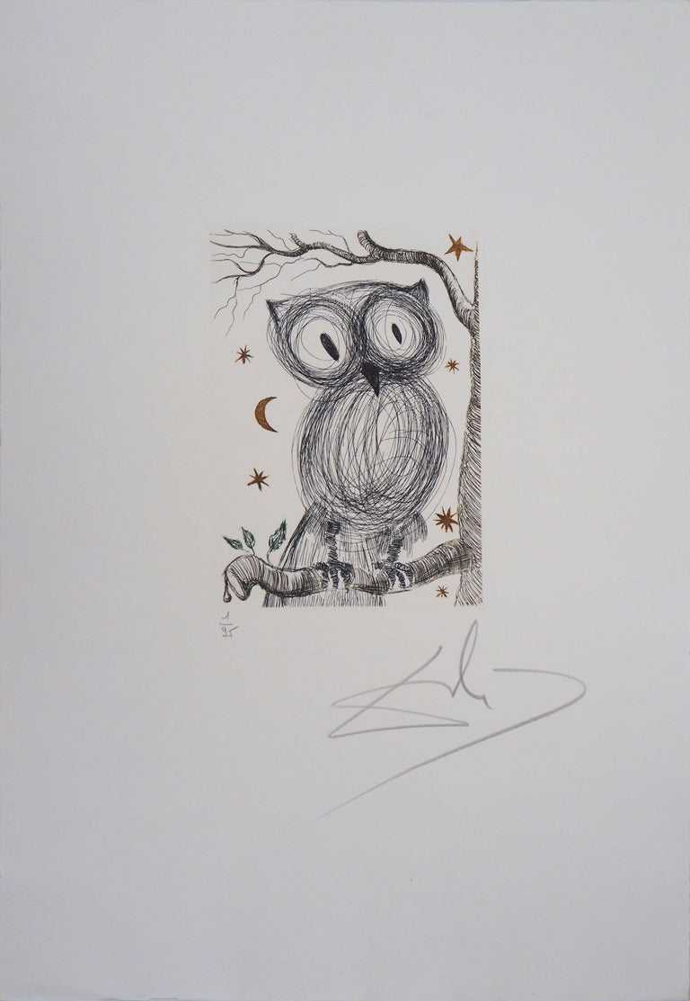 The Little Owl - Original handsigned etching, n° 1/95 (Field #68-9) - Print by Salvador Dalí