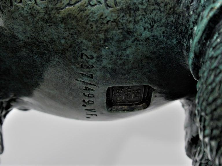 Rhinoceros Habille en Dentelles 1