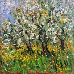 Pommiers en Fleurs, Ste Hilaiye