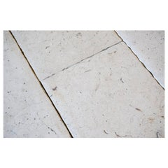 Sample of Limestone Flooring from Jericho