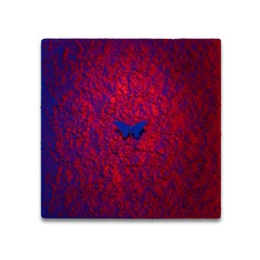 Vanish 01.06 Blue Red B - 21st Century, Contemporary, Figurative, Blue Butterfly