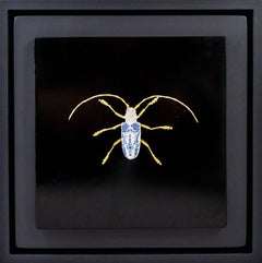Anatomia Sawyer Beetle - 21st Cent, Contemporary Sculpture, Figurative, Insect