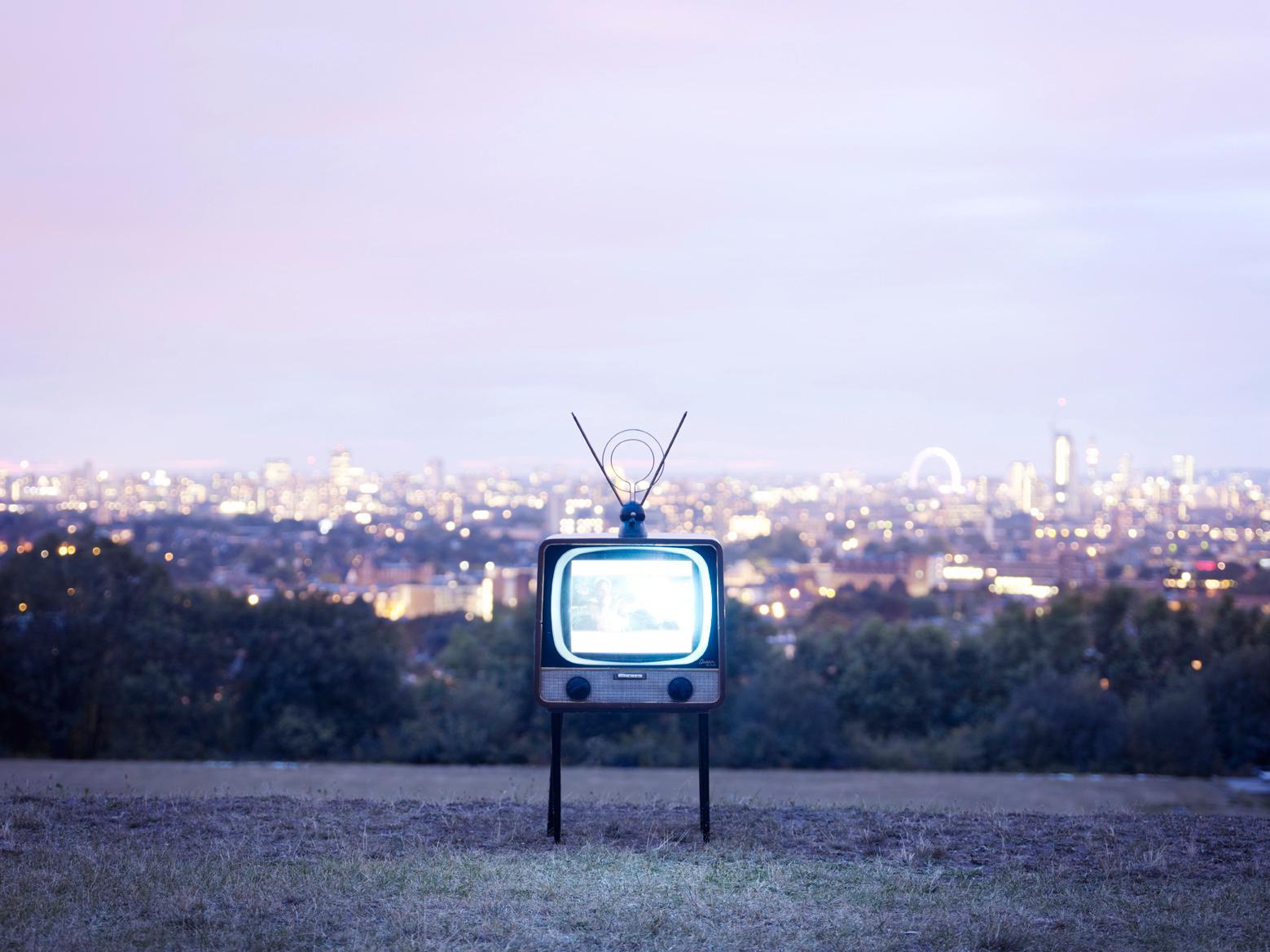TV 1 - Samuel Hicks, London, Landscape, Nature, Floral, Contemporary Photography