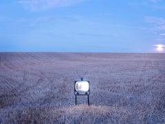 TV 3 - Samuel Hicks, Landscape, Photography, Nature, Flowers, Lilac