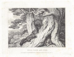 Dog, cock and fox, antique animal fable etching by Samuel Howitt