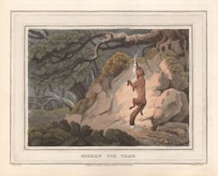 German Fox Trap, aquatint engraving field sport hunting print, 1813