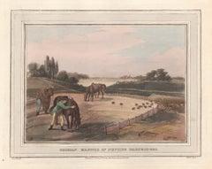 German Manner of Netting Partridges, aquatint engraving hunting print, 1813