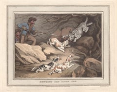 Hunting the Tiger Cat, aquatint engraving field sport hunting print, 1813