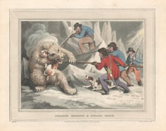 Seamen Killing a Polar Bear, aquatint engraving field sport hunting print, 1813