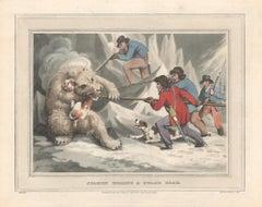 Seamen Killing a Polar Bear, aquatint engraving field sport hunting print, 1813