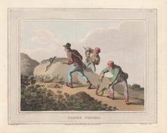Taking Vipors, aquatint engraving snake hunting print, 1813