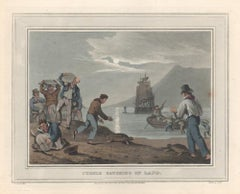 Turtle Catching on Land, aquatint engraving hunting print, 1813