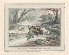 Wild Boar attacking the Hunters, aquatint engraving hunting print, 1813