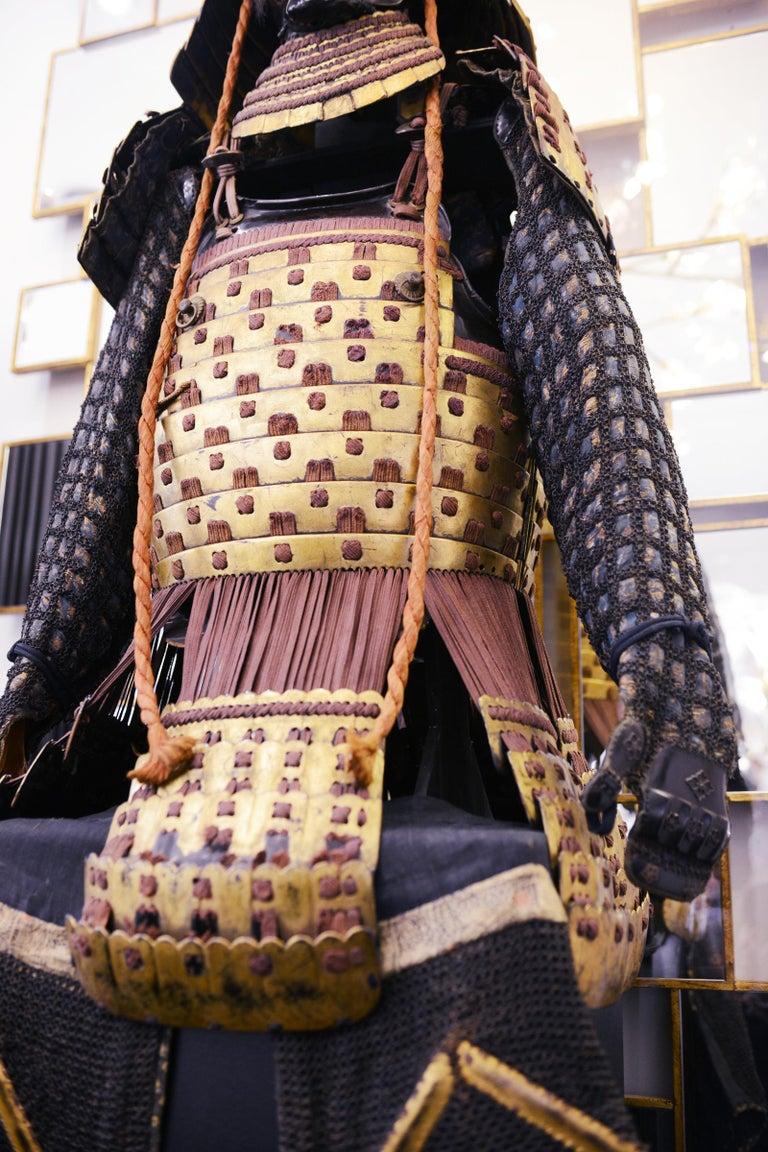 Samuraï Warrior Armor Mori-Kawa For Sale 6