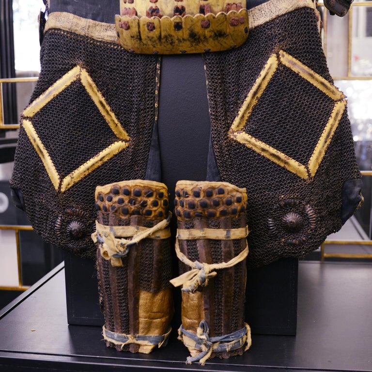 Samuraï Warrior Armor Mori-Kawa For Sale 11