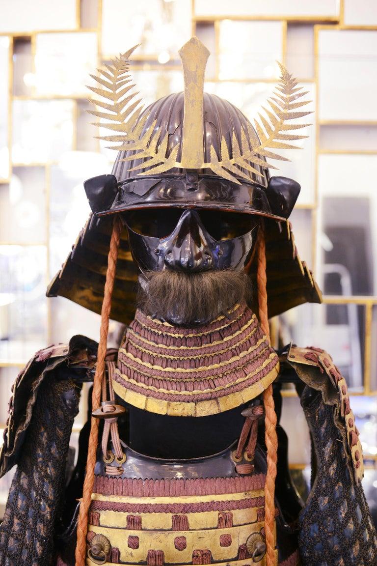 Late 18th Century Samuraï Warrior Armor Mori-Kawa For Sale
