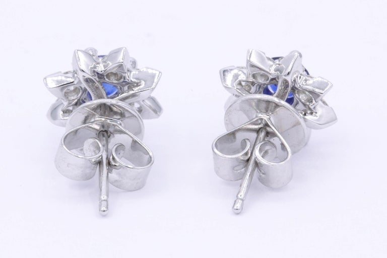 Women's Sapphire and Diamond Halo Studs Earrings For Sale