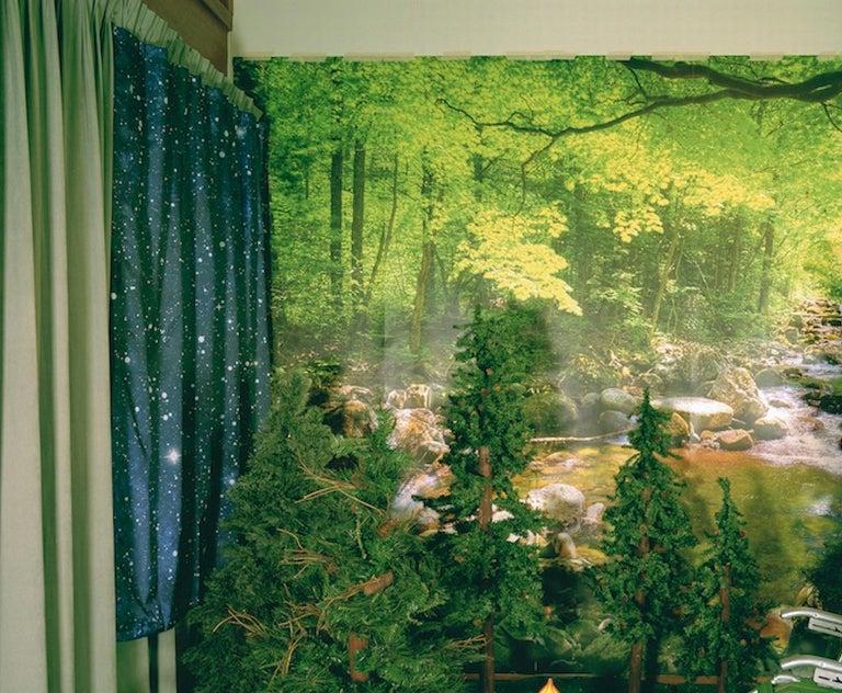 Private Nature - Twilight Living Series Chromogenic Print, Green, Tree Room - Contemporary Art by Sarah Hobbs
