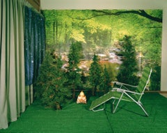 Private Nature - Twilight Living Series Chromogenic Print, Green, Tree Room