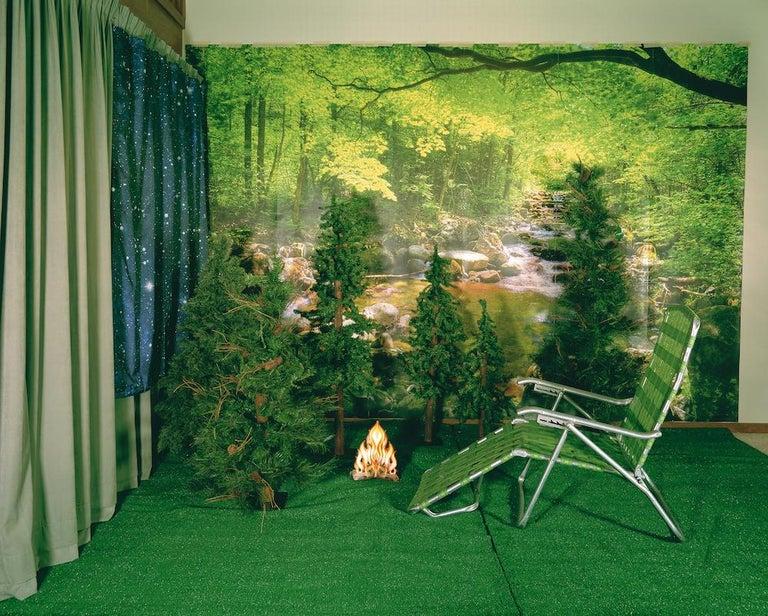 Private Nature - Twilight Living Series Chromogenic Print, Green, Tree Room - Art by Sarah Hobbs
